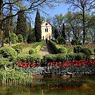 The Hermitage by annalisa bianchetti