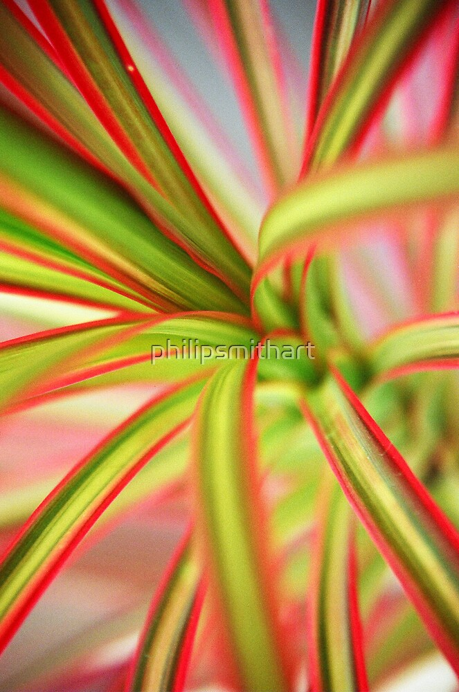 Red Stripey Plant by philipsmithart