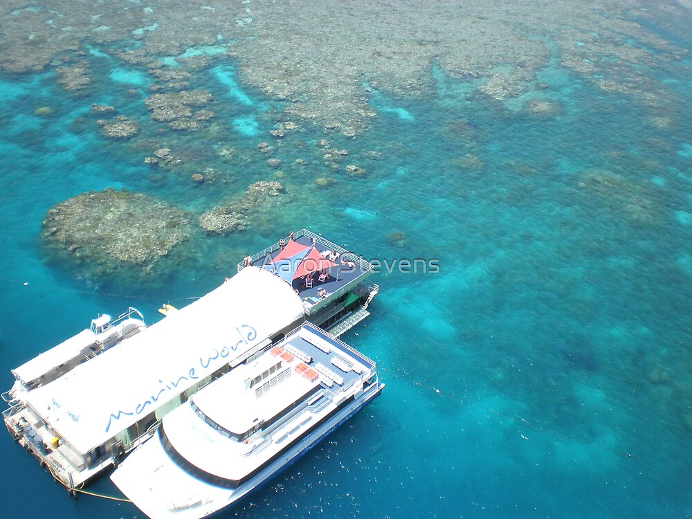 Great Barrier Reef by Aaron Stevens