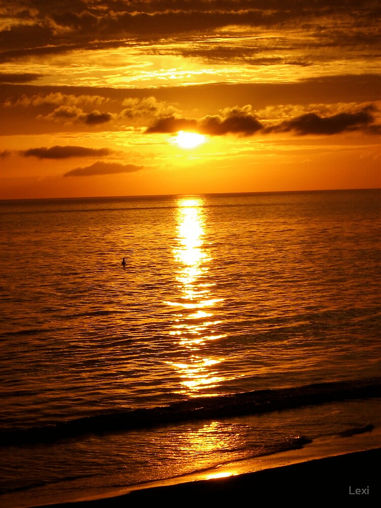 A Very Warm 2008  CA Sunset by Lexi