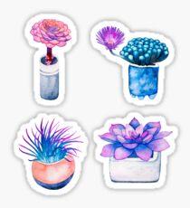 Succulent Cactus Pattern Sticker