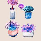 «Patrón de cactus suculento» de Ruta Dumalakaite