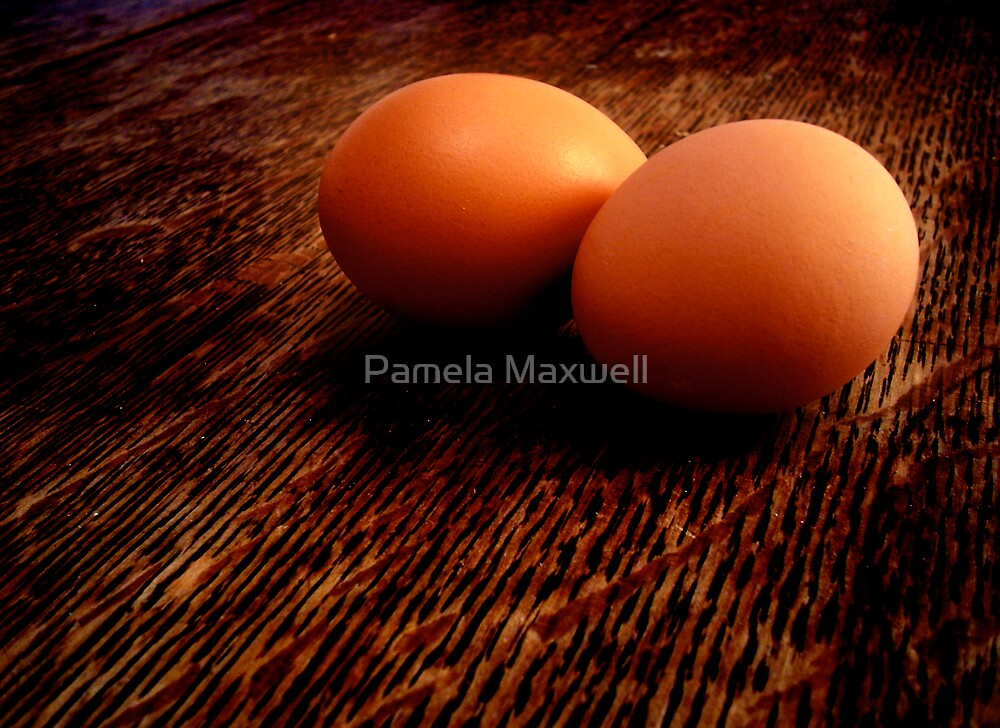 The Incredible Egg by Pamela Maxwell