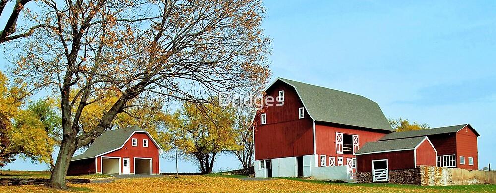 Fall On The Farm by Bridges
