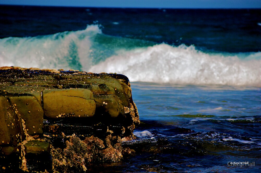 ROLLING WAVE by Cheryl Hall