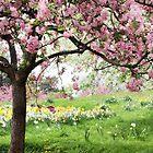 Spring Fever by Jessica Jenney