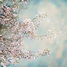 Cherry Blossom Dreams by Linda Lees