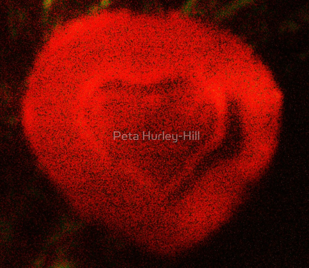 warm and fuzzy by Peta Hurley-Hill