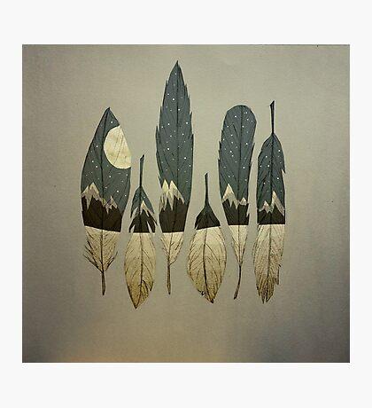 The Birds of Winter Photographic Print