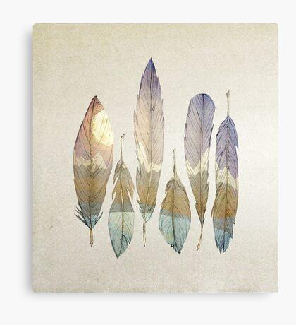 Mountain Birds Canvas Print