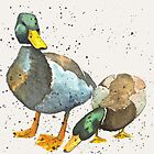 Country Ducks by michcampbellart