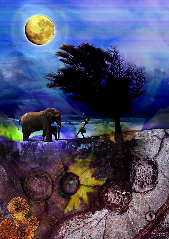 MoonDance Stories by Damian Kuczynski
