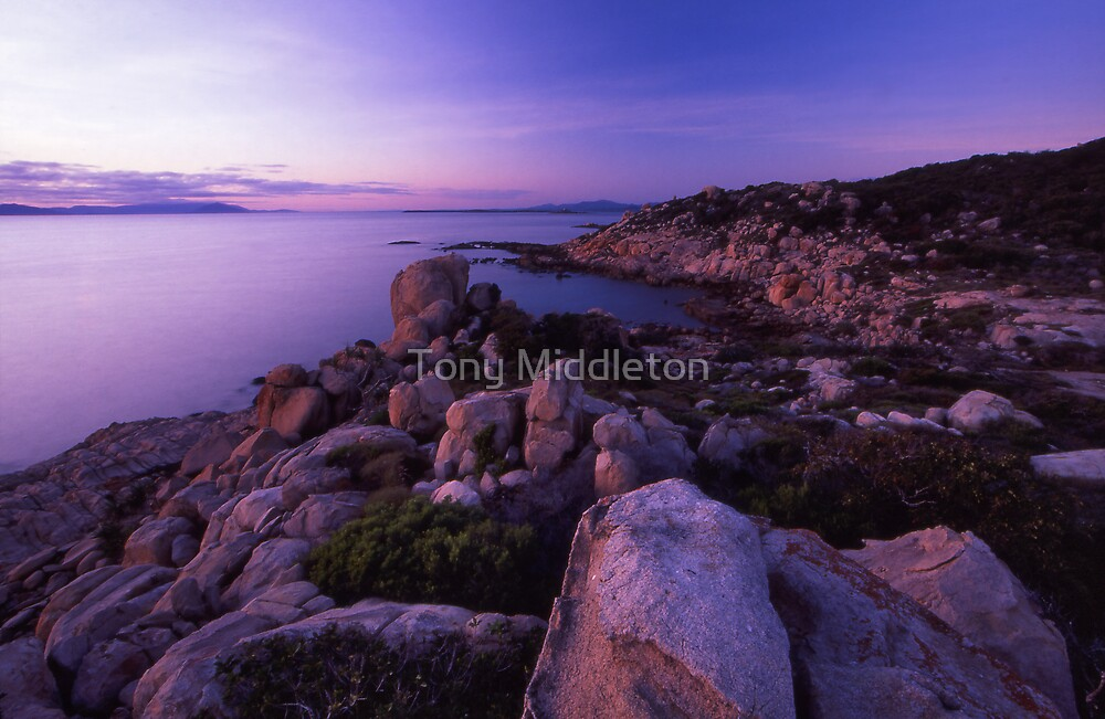 coastal kisses by Tony Middleton
