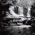 Horseshoe Falls, Mount Field National Park by John  Cuthbertson | www.johncuthbertson.com