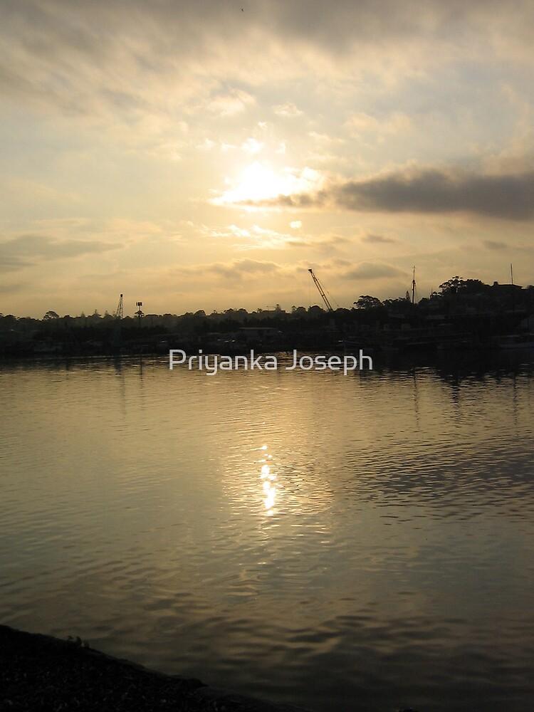 Glebe Point at Sun Down by Priyanka Joseph