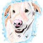 Labrador  by Luke Tomlinson