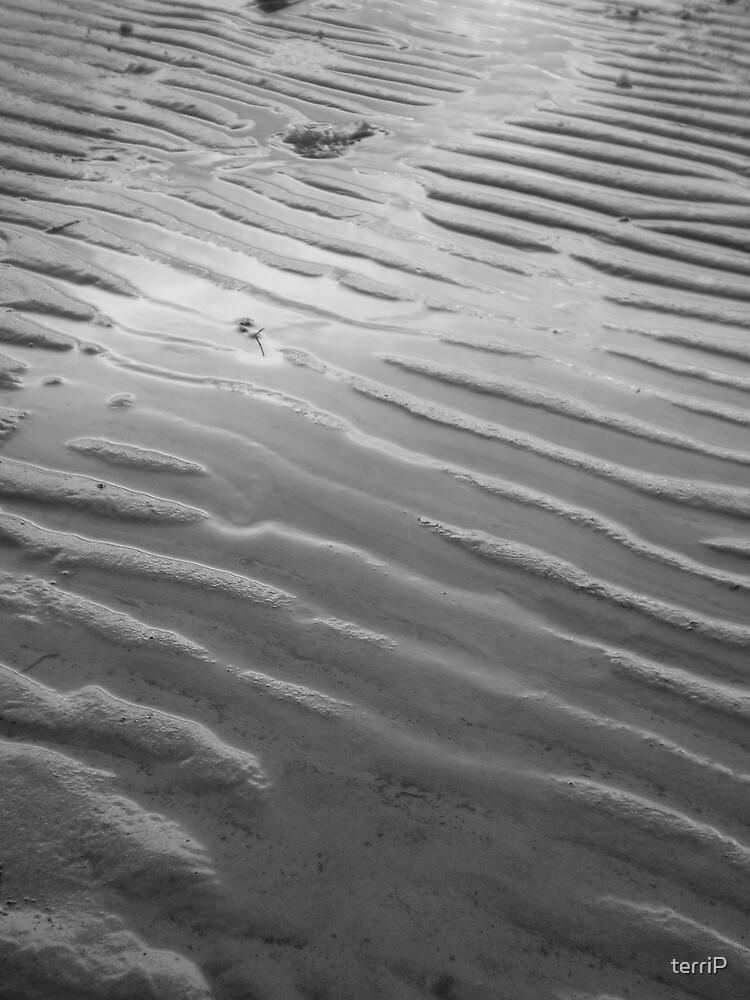 Low Tide by terriP