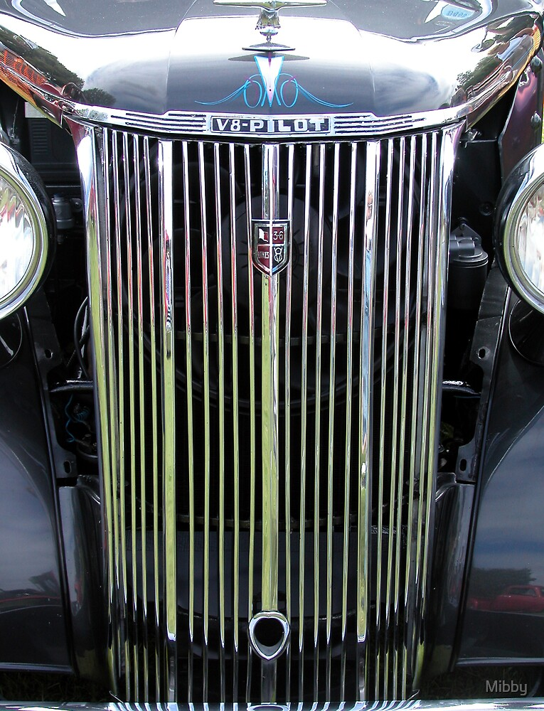 Custom Car Grille by Mibby