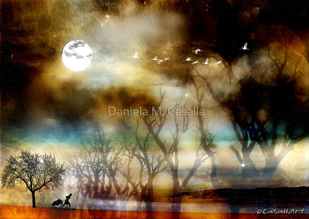 Dreamy by Daniela M. Casalla