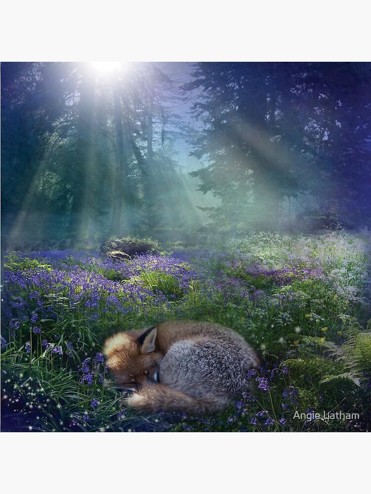 Bluebell Dawn by AngelaBarnett