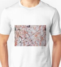 Quartz in granite Unisex T-Shirt