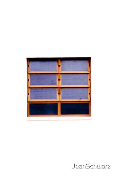 Window of Opportunity by JeanSchwarz