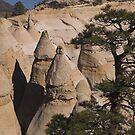 Tent Rocks by Tamas Bakos