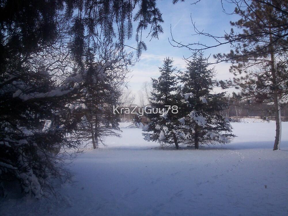 Snowscape 2 by KraZyGuy78