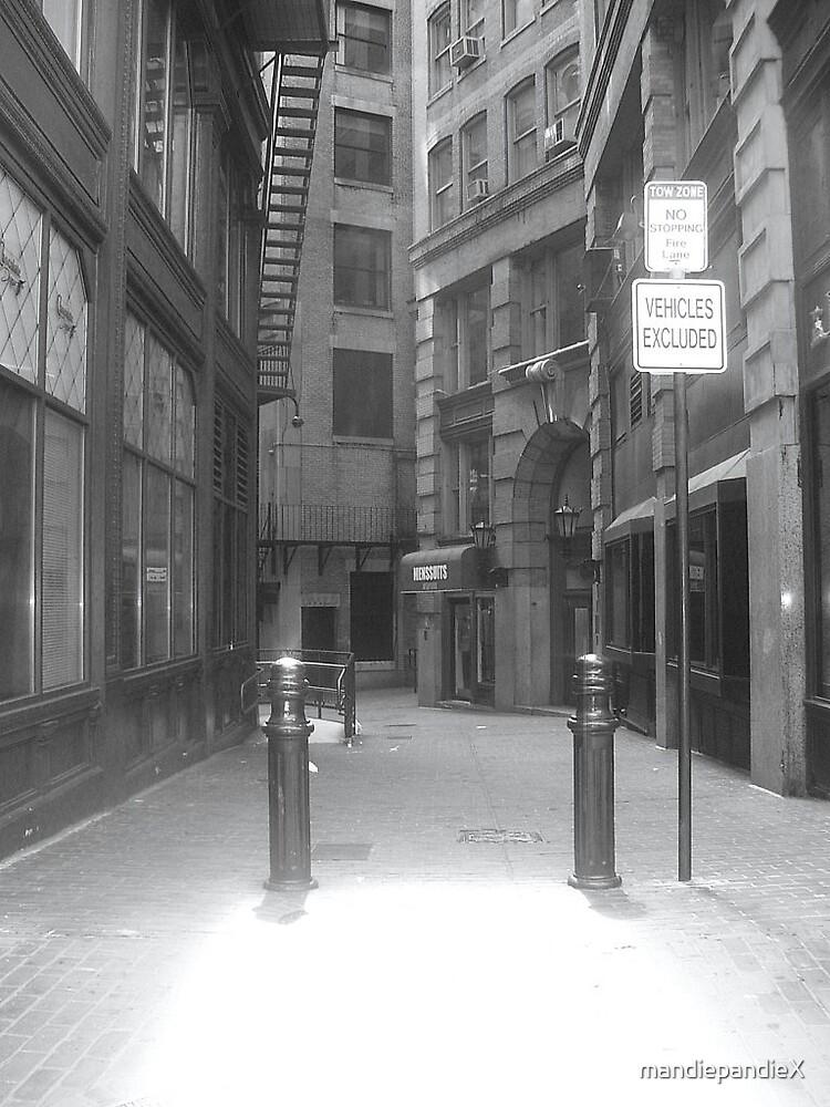Alleyway by mandiepandieX