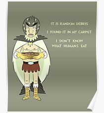 Bird Person Has Random Debris Poster