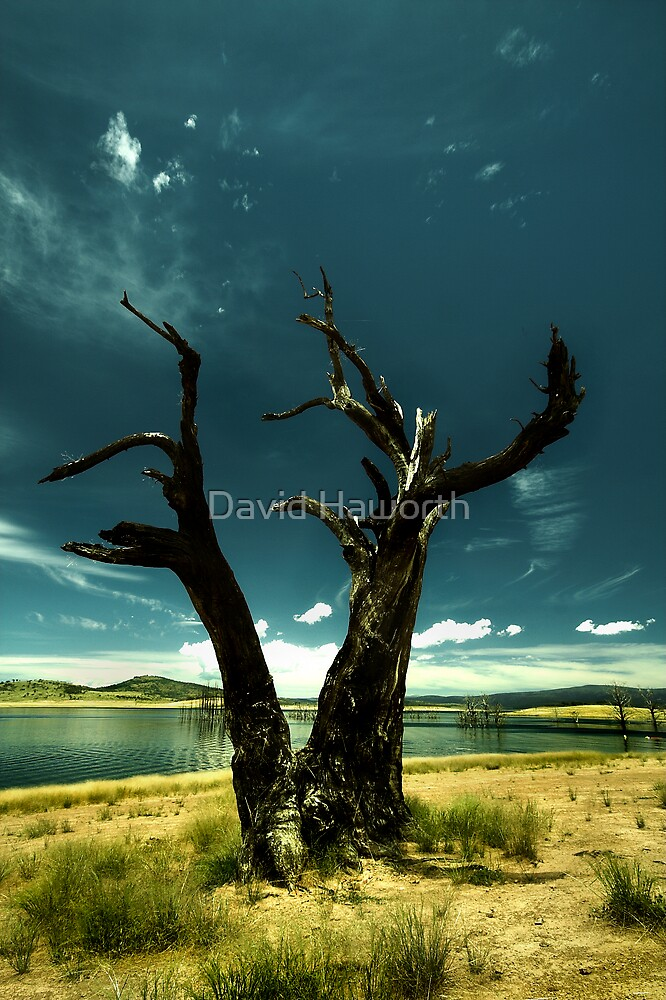 Memories of Blue Skys by David Haworth