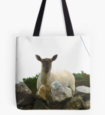 Curious Sheep - Fanad Head, Donegal, Ireland Tote Bag