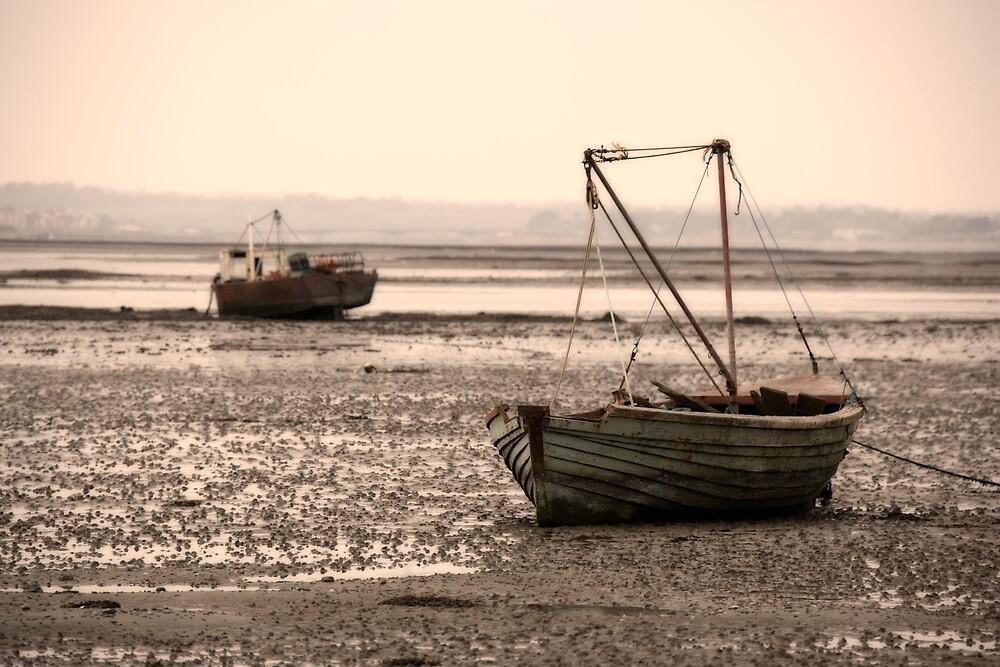 Stranded boats by Ramona Farrelly