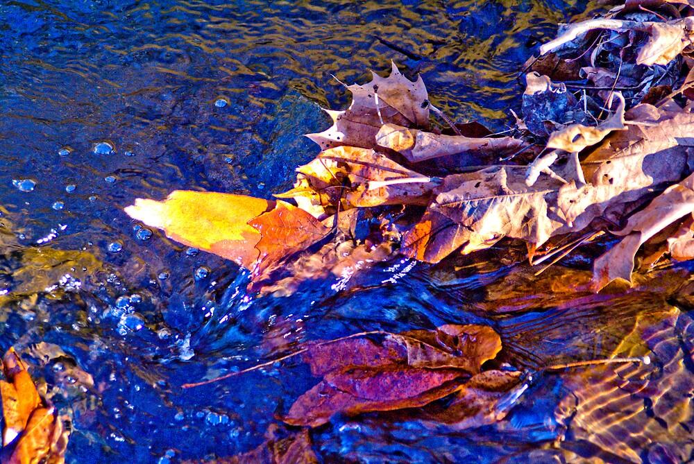 Flowing by Rod  Adams
