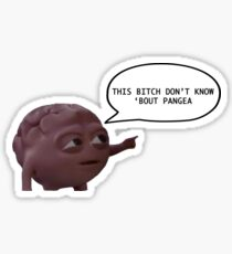 Bitch Don't Know 'Bout Pangea Sticker