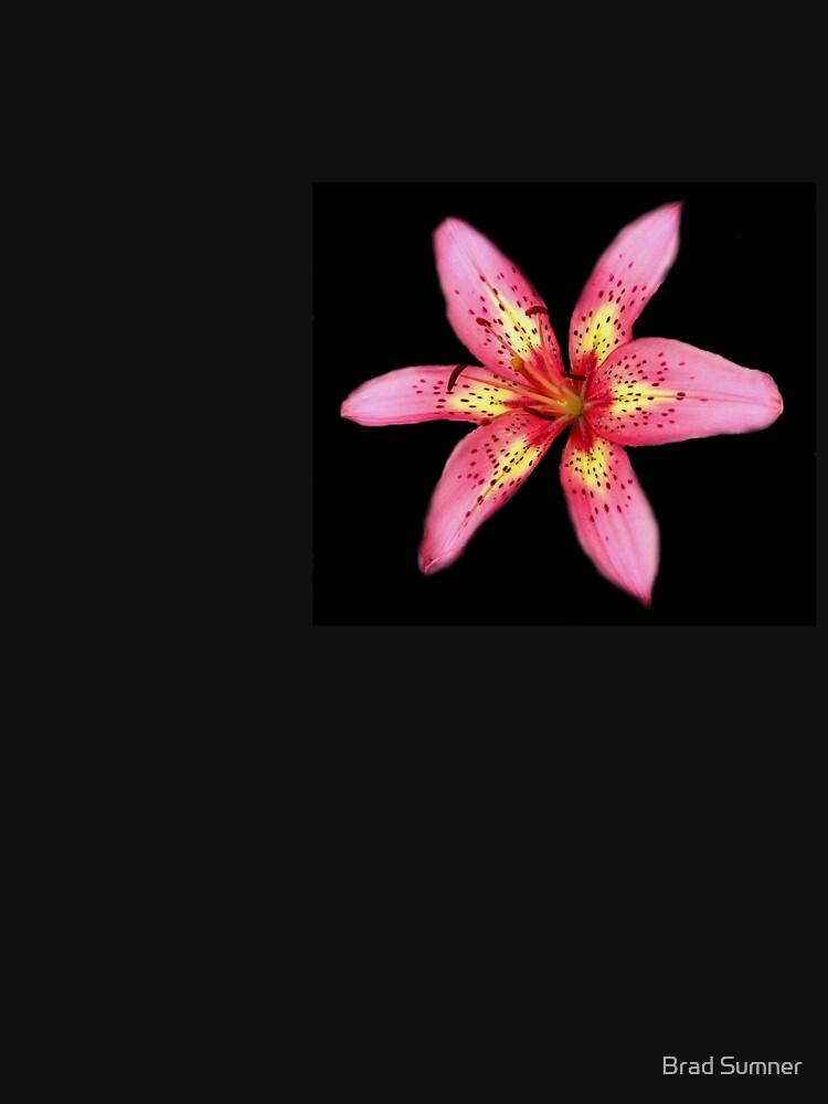 Tiger Lily 1 by bdsumner55