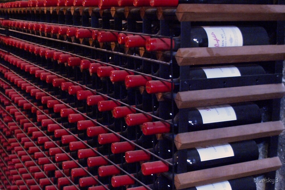 The Wine Rack by bluesky3