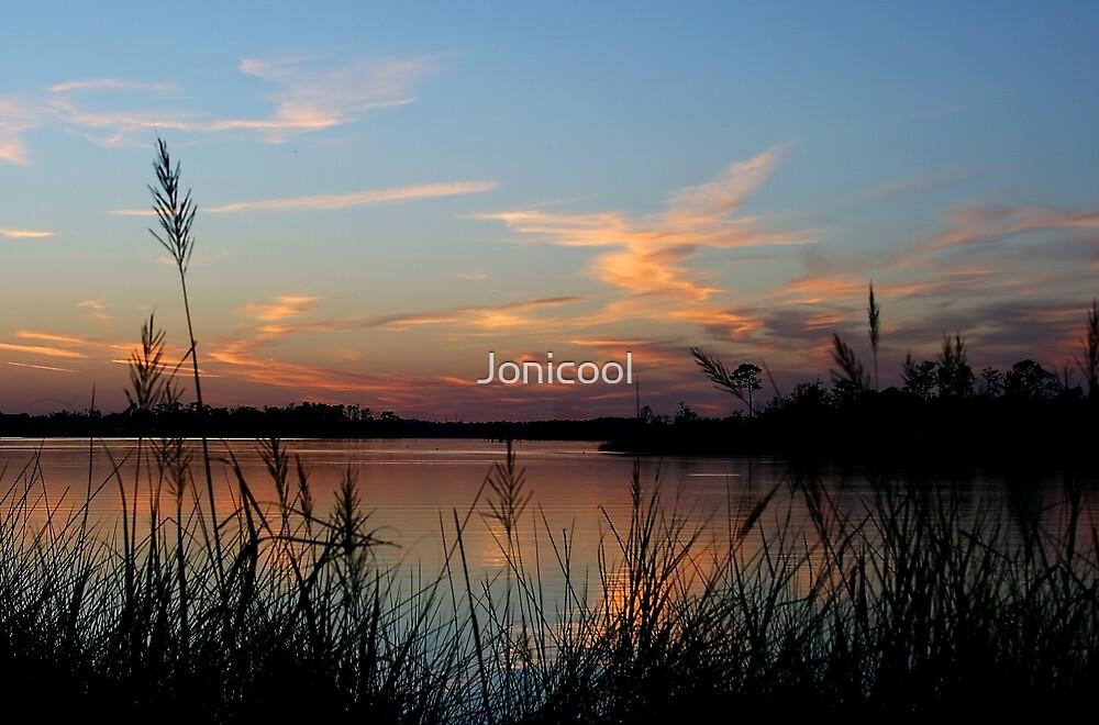 Blue Bayou by Jonicool
