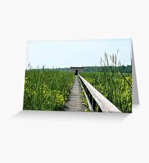 River Observatory Surrounded by Reeds, Maryland Greeting Card