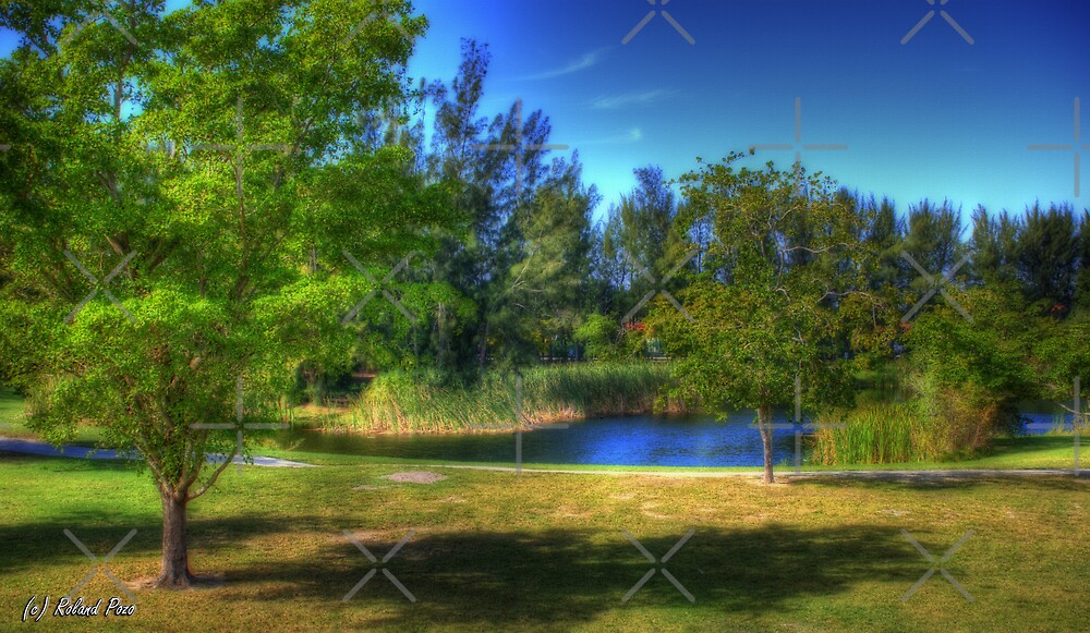 Bleau's Lake by photorolandi