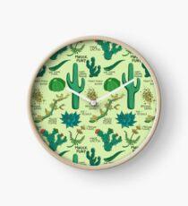 Native Desert Plants || Cacti Clock