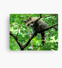Yeah, I'm just hangin' out. Whatchu doin'? Canvas Print