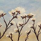 Cotton by Deb Coats