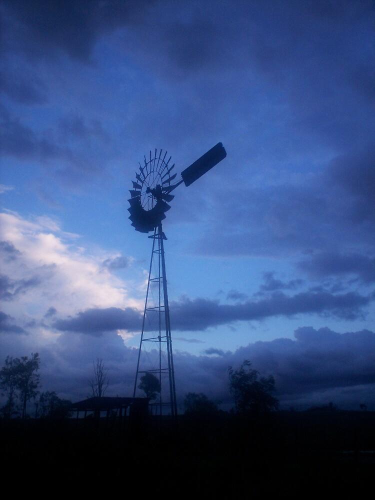 Evening Skys by Chantel Martin
