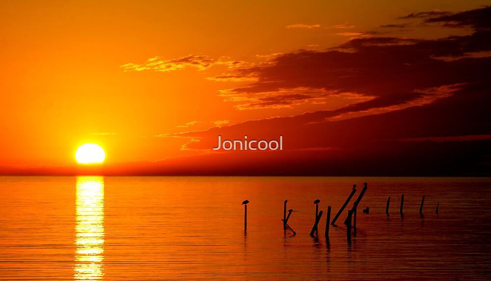 Pure Gold by Jonicool