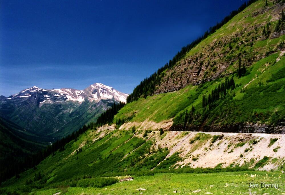 Glacier National Park by Tim Denny