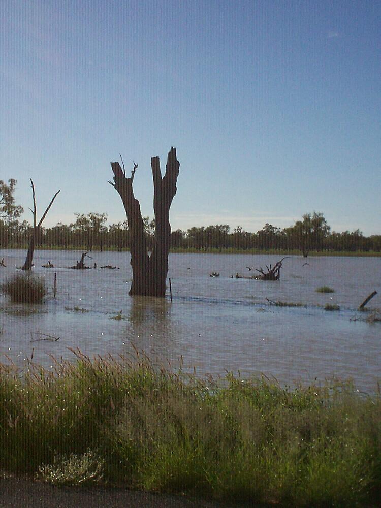 Flood Waters by Chantel Martin