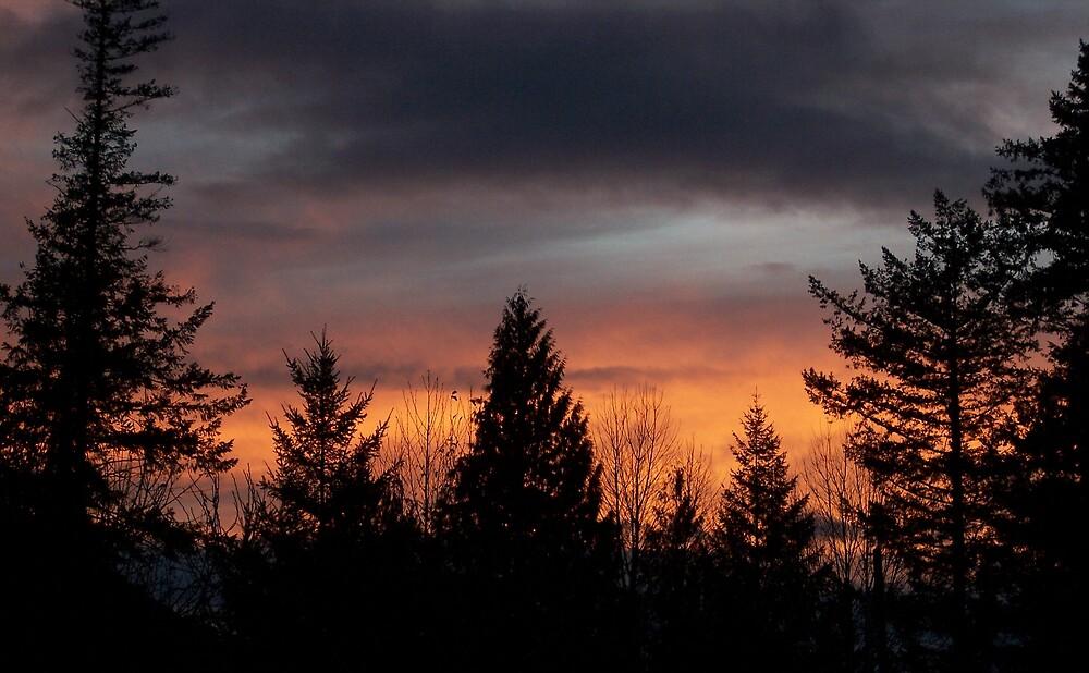 Dark Sunset by Valerie