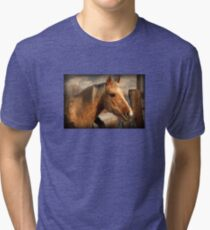 Palamino HOrse T-shirt Tri-blend T-Shirt