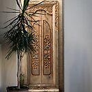 Bali Door by Christina Backus
